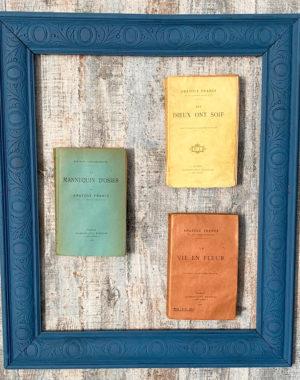 Livres anciens d'Anatole France